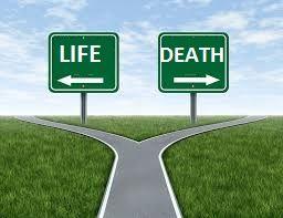life-or-death-1_orig